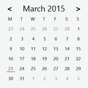 CalendarDatePickerCustomStyle